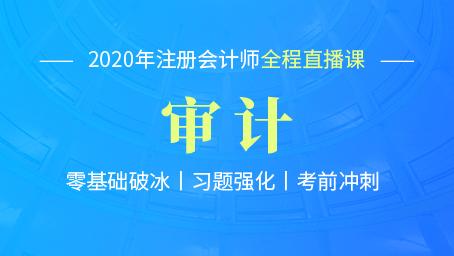 2020年注会审计习题强化班第十七讲