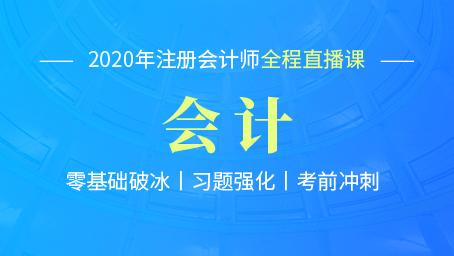 2020年注会会计习题强化第十八讲