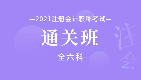 2021年注册会计师通关班(全六科)