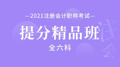 2021年注册会计师提分精品班(全六科)